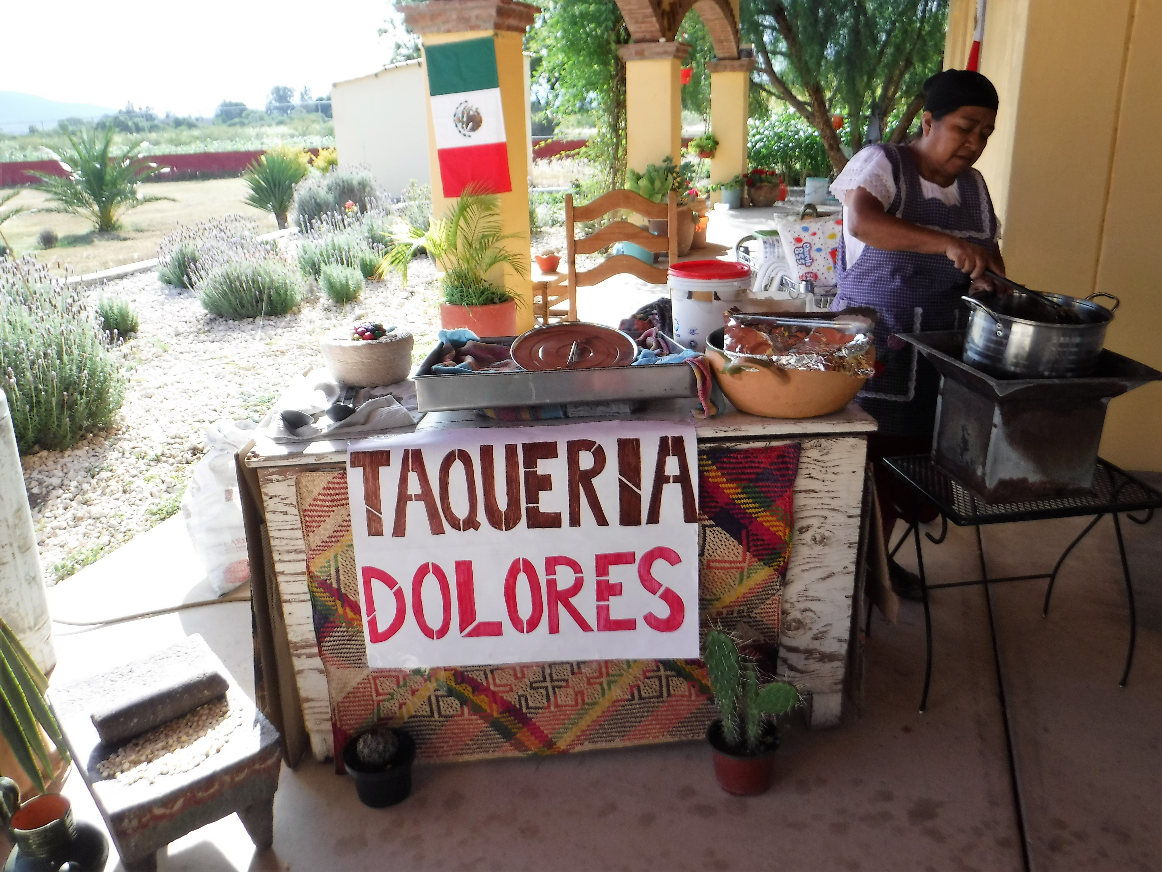 tacos dolores madre